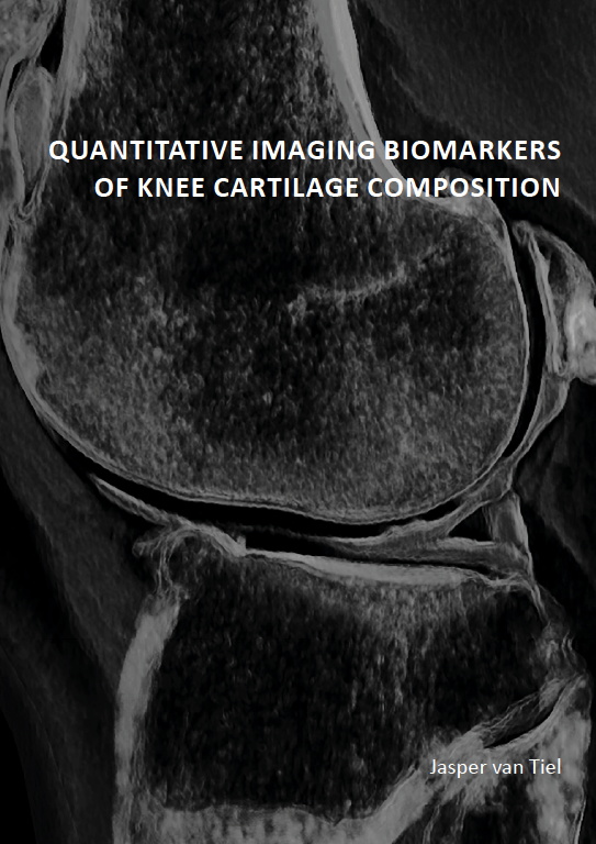 Quantitative imaging biomarkers of knee cartilage composition
