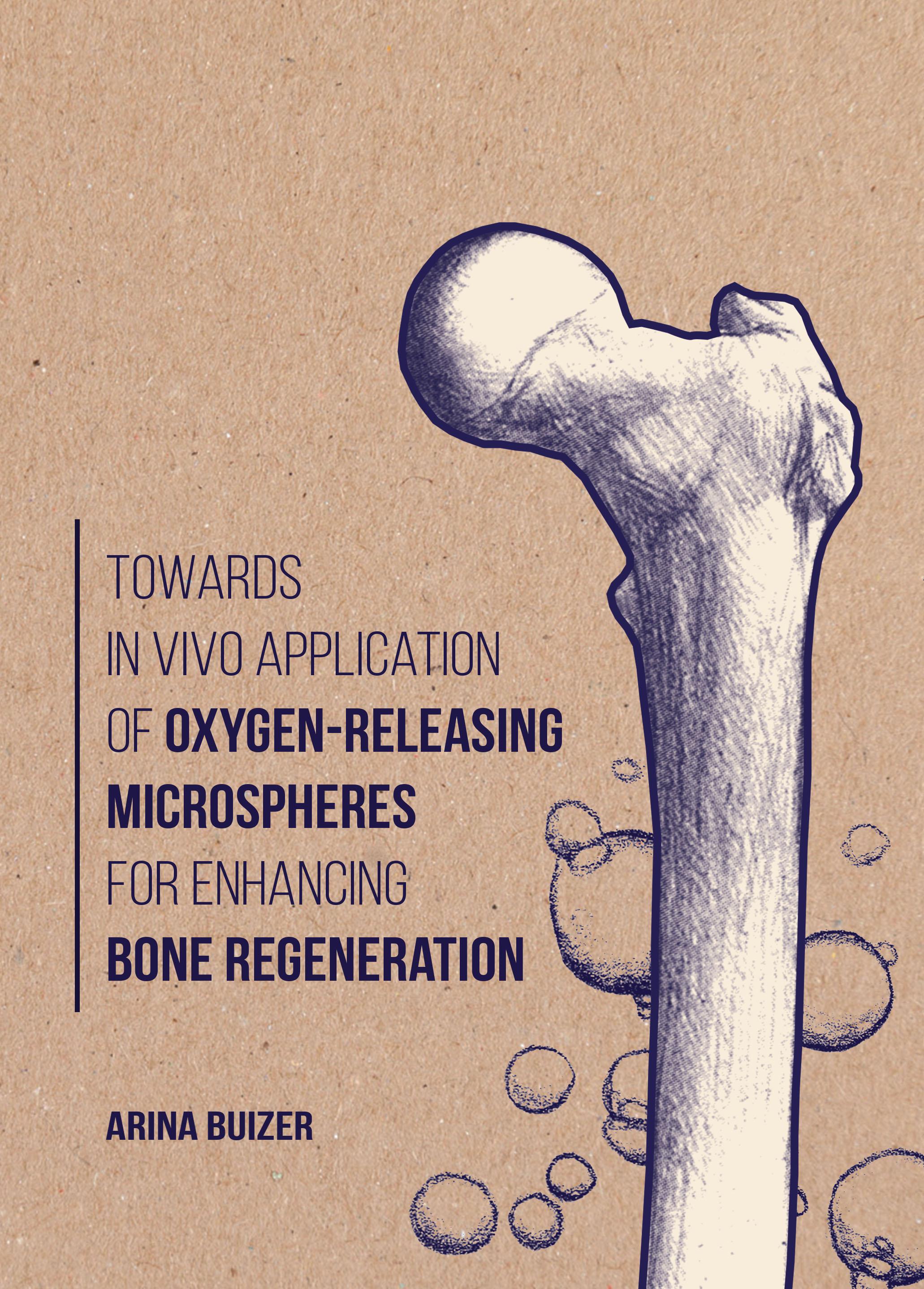 Towards in vivo application of oxygen-releasing microspheres for enhancing bone regeneration
